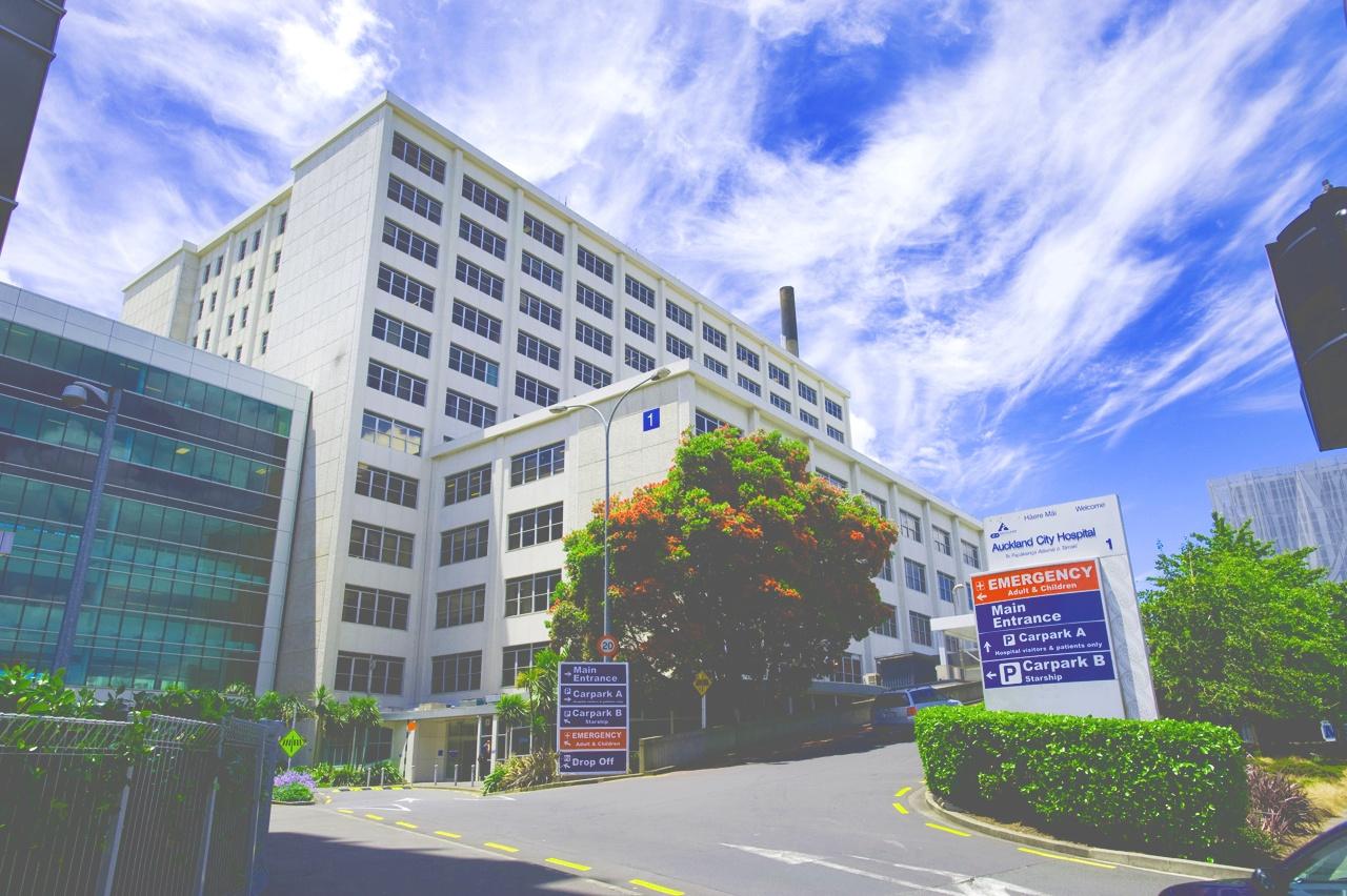 AucklandDHBInsulation